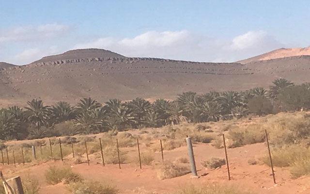 فرقة من عسكر الجزائري تقتحم الحدود المغربية الشرقية والجيش المغربي يتدخل (صورة+فيديو)